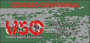 cartel consejo confederal 2014