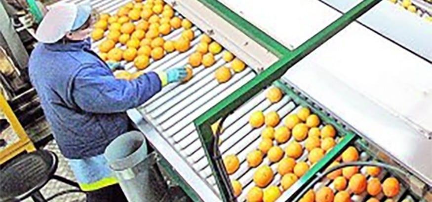 USO acusa a Greenmed Cartaya de pagar a la plantilla menos del SMI y suplir a los trabajadores con ETTs