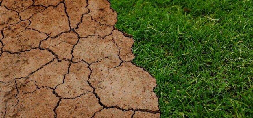 Declaración de USO ante la Conferencia del Clima de Katowice (COP24)