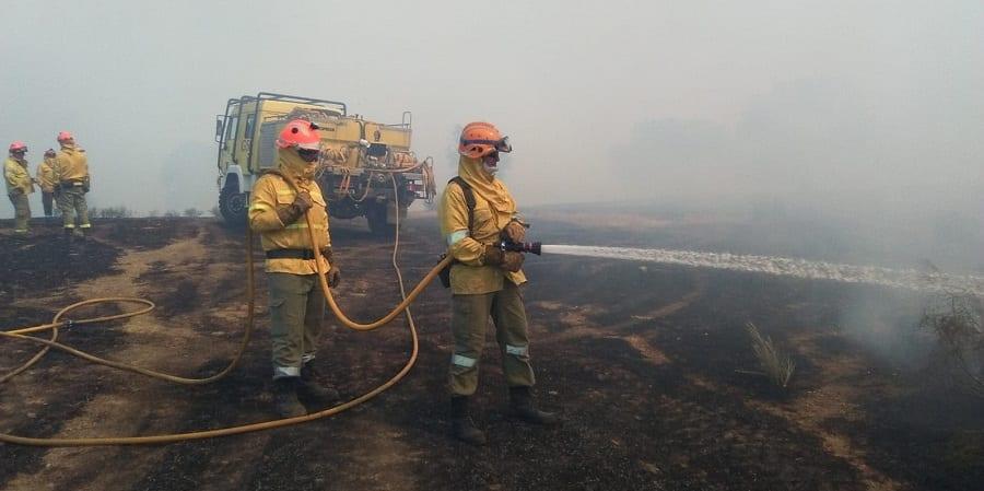 USO denuncia la situación laboral de los 800 bomberos forestales de Extremadura