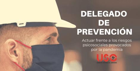Actuaciones del delegado de prevención frente a los riesgos psicosociales
